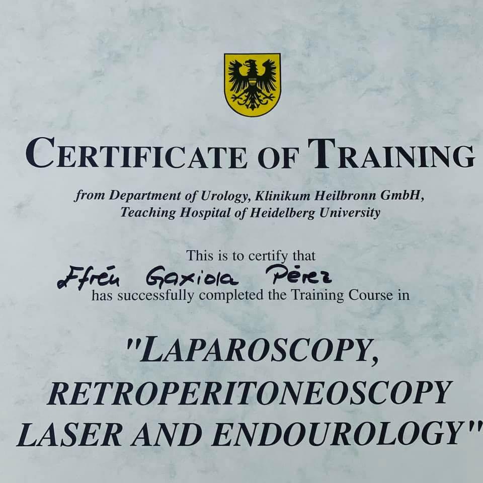 entrenamiento-en-laparoscopia-retroperitoneoscopia-laser-y-endourología-de-la-universidad-heidelberg